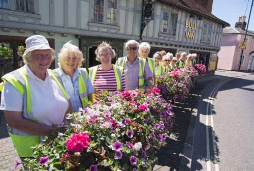 Halstead in Bloom Image